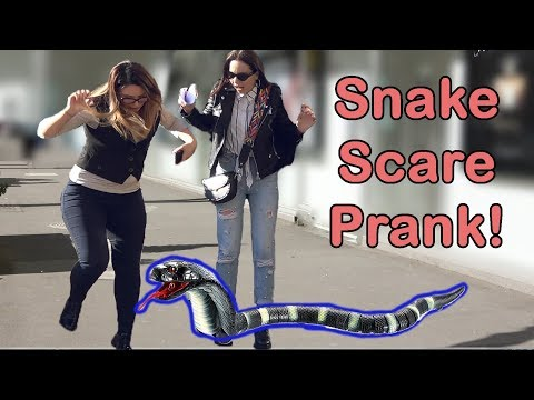 Snake Scare Prank! 2019 - AWESOME REACTIONS - Best of Just For Laughs
