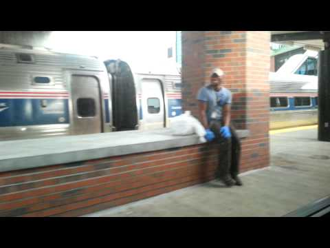 Amtrak Adirondack Southbound Train Arriving at Albany-Rensselaer Station