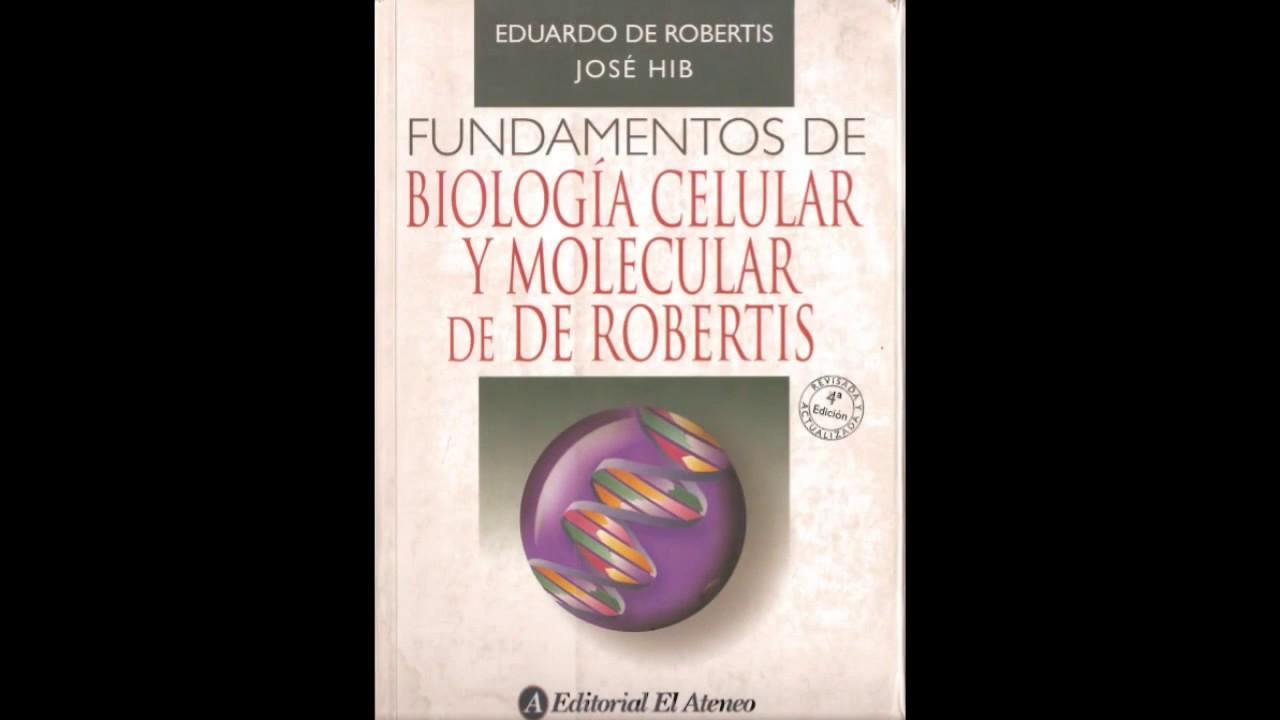 Contemporáneo Fundamentos De La Descarga Libre De La Anatomía Y La ...