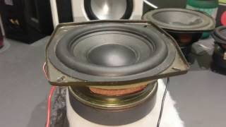 Philips/Volvo Stock Car Subwoofer - Beastly 5