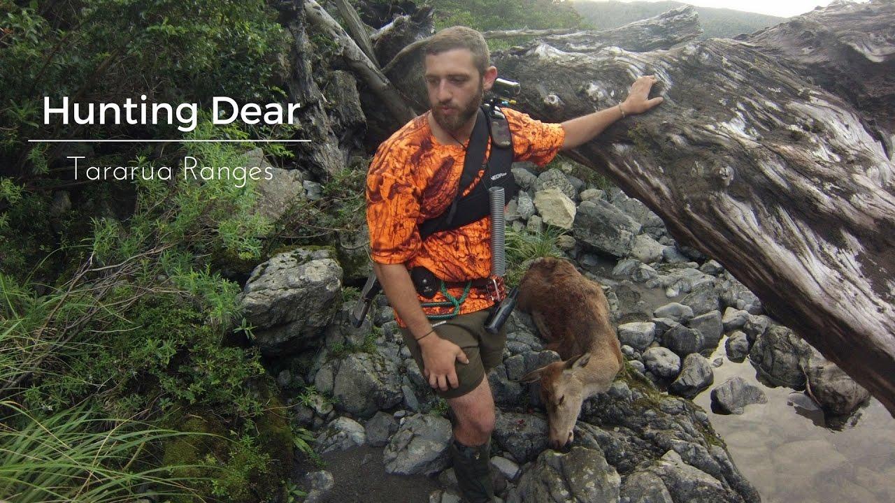 Hunting Deer || Tararua Ranges