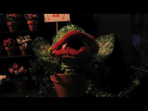 FEED ME! - UWM Student Stop-Motion Animation