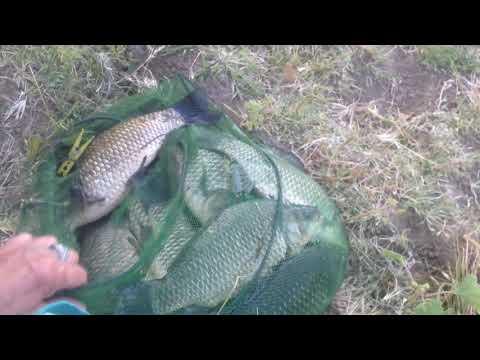 Рыбалка на Ахтубинск