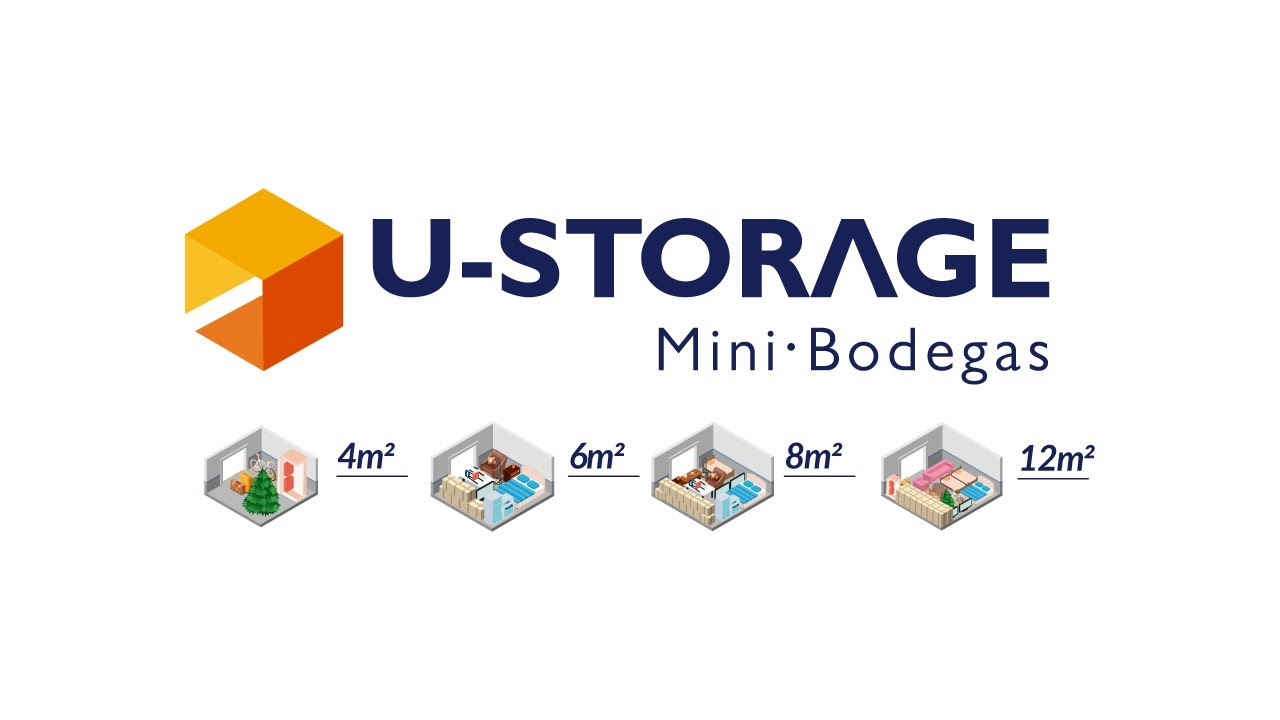 U-STORAGE DRIVER FOR PC
