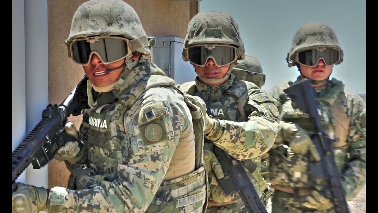 Infantes De Marina De México Y U.S En Ejercicios