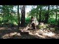 Patron a pohodička v lese...
