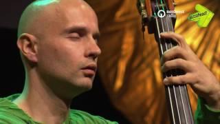 jazzahead! 2017 – Trio Elf