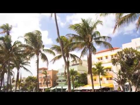 Discover Miami, Florida On Big Bus Tours