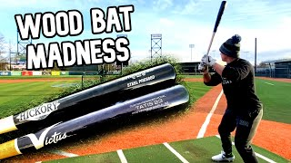 Download Old Hickory MT27 Maple vs. Victus TATIS23 Maple | Wood Bat Madness 1.0 | Episode 1