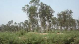 2381 Poorva Express blasts through the forests of Hazaribagh
