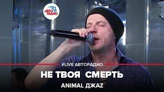 Animal ДжаZ Не Твоя Смерть LIVE Авторадио