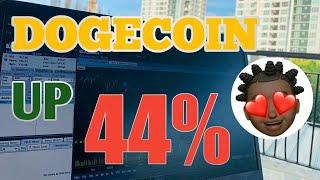 Dogecoin Reaches 44% In Crypto Market Reversal 🚀