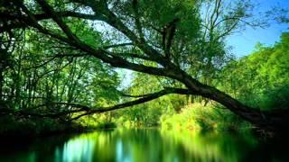 Morandi - Save Me - картинки природа(, 2012-03-04T11:25:04.000Z)