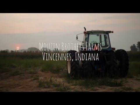 Locally Grown - Mouzin Brothers Farms, Vincennes, IN