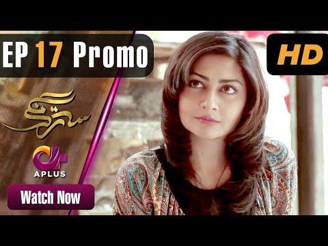 Satrangi - Episode 17 Promo | Aplus Dramas | Faisal Qureshi, Jana Malik, Farhan | Pakistani Drama