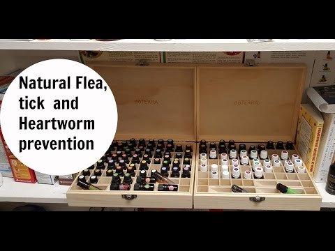 natural-flea,-tick-and-heartworm-prevention