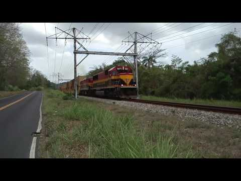 Freight train passing by on the Panama Canal Railway