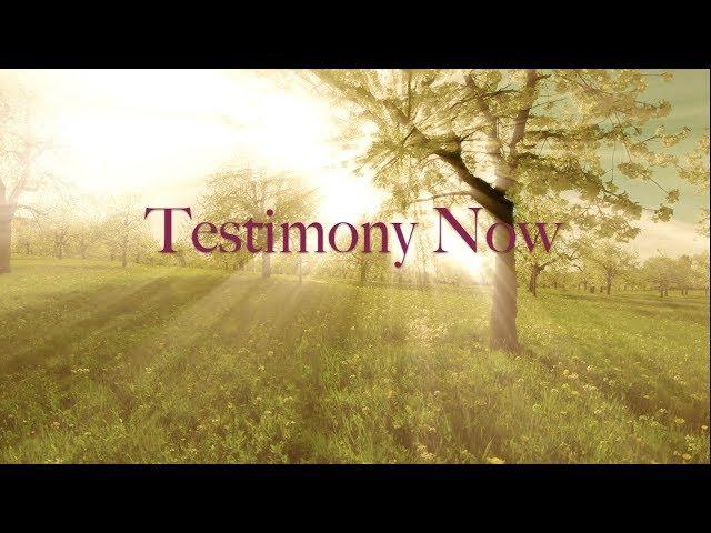 Testimony Now