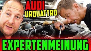 SCHLECHTE NACHRICHTEN! - Audi Urquattro 10V TURBO! - Björn Pieper muss mit ins BOOT!