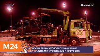 Смотреть видео В России ввели уголовное наказание за побег с места ДТП - Москва 24 онлайн