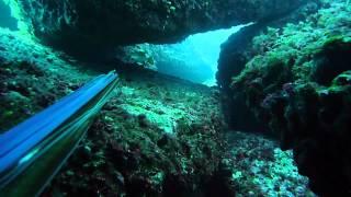 Pesca Submarina en Mallorca IV - Spearfishing in Mallorca IV