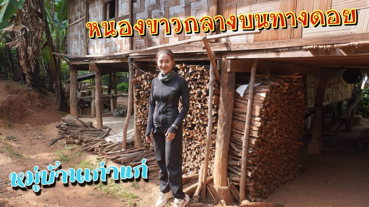Download ดิบ ฝน ชนเผ่า EP314 หมู่บ้านเก่าแก่หนองขาวกลางบนทางดอย