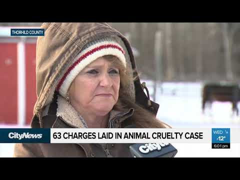 Alberta woman faces 63 animal cruelty charges