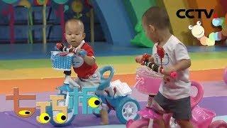 《七巧板》 20191109 健康宝宝大比拼| CCTV少儿
