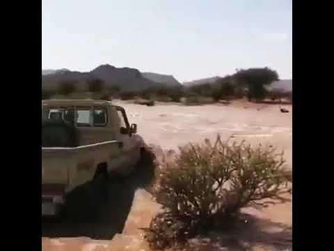 شاص يقطع سيل Youtube