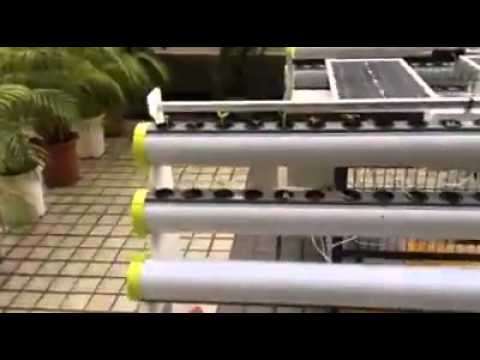 HYDROPONICS SYSTEMS BEING POWERED BY SOLAR ENERGY