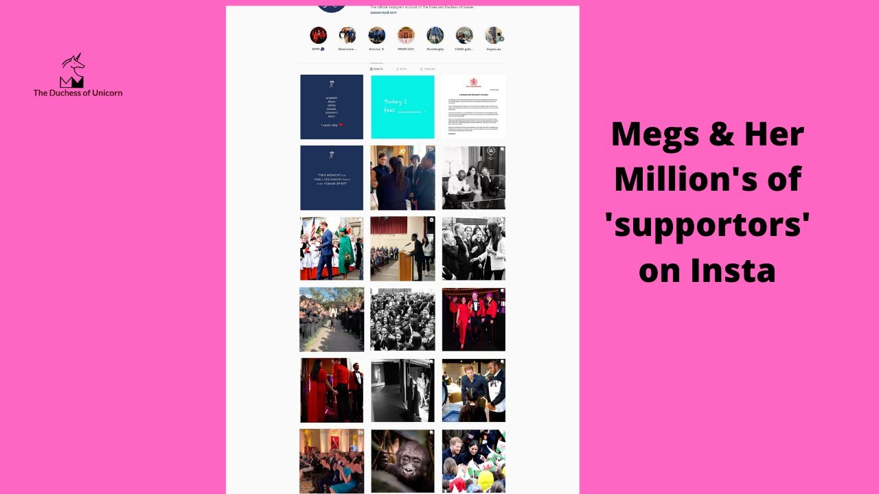Let Us Laugh and Peek at  Instagram Meg's Millions of 'supporters'