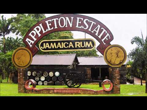 Top 15 Tourist Attractions in Jamaica