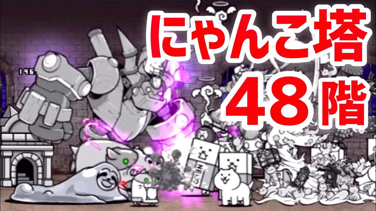 塔 48 にゃんこ