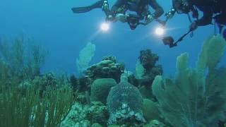 Cayman Brac Scuba Mission Trip- Dive day 2