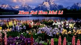 Gambar cover Xian Zai Hen Mei Li (Lagi Syantik)