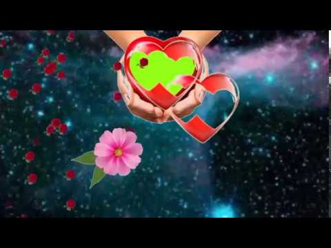Green screen background flower animation effects thumbnail