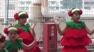 2017年9月23日 ローラちゃん応援隊バラキッズwith愛津咲 車輪村Rim.