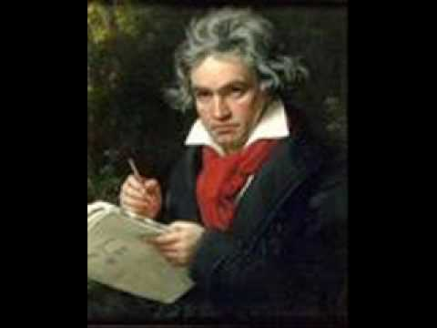 Beethoven-Symphony no. 5 in C minor, Op. 67, Mov. 1