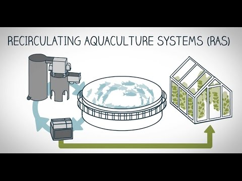 What is land-based fish farming?