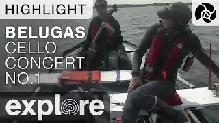 Cello Concert #1 - Beluga Boat - Live Cam Highlight thumbnail