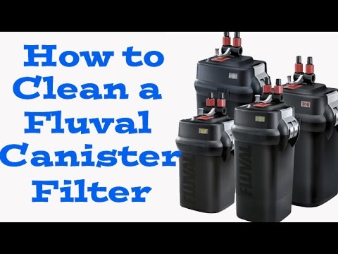 how to clean a fluval canister filter (106, 206, 306,406) -