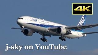 [4K] Plane Spotting at Tokyo Haneda Airport - BA, JL, NH, CI, CX / 羽田空港 JAL ANA