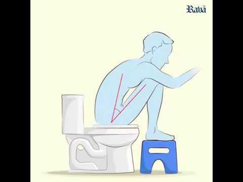 Kya Aap English Toilet Use Karte He? Pls Watch  In Hindi Urdu