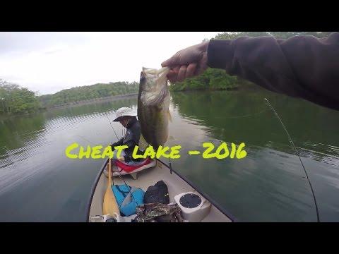 Bass Fishing At Cheat Lake!