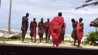 タンザニア・ザンジバル島でみたマサイ族のダンスです。映像ではその迫...