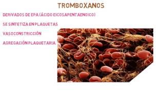 A2 accion tromboxano