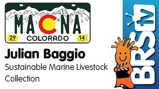 Sustainable Wild Collection of Australian Fish and Corals by Julian Baggio | MACNA 2014 thumbnail