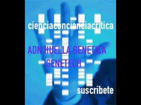 CUERPOS DE NAZCA ADN GENETECH /CIENCIACONCIENCIACRITICA  C3