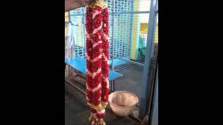 Madurai Decorators Wedding Stage Decorations And Wedding Garland