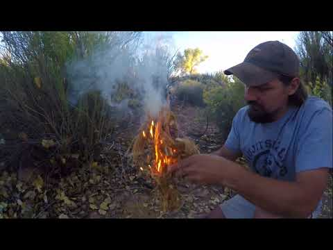 Two person Bow Drill Friction Fire with my daughter Savy2002